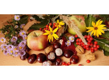 Alimentazione e capelli: la top 10 dei cibi autunnali